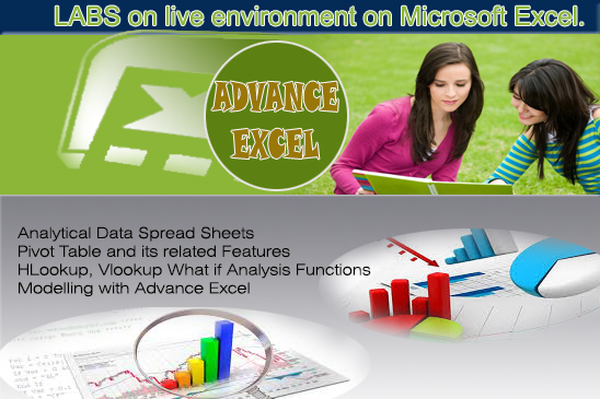 Learn Advance Excel