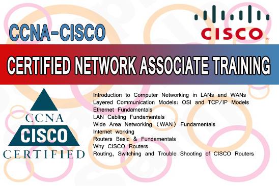 CISCO - CCNA Training Course in Karachi & Pakistan - 3D