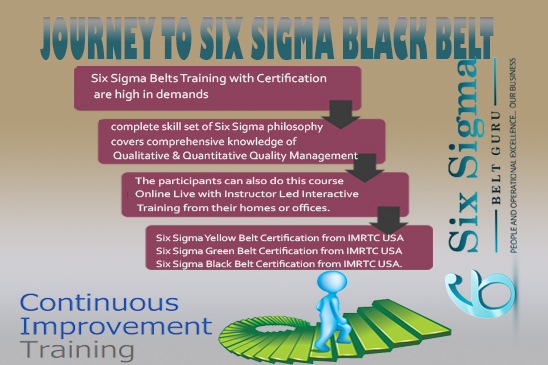Learn Journey to Six Sigma