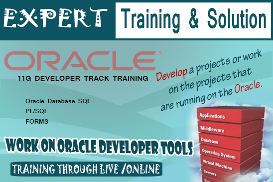 Learn Oracle Developer Track