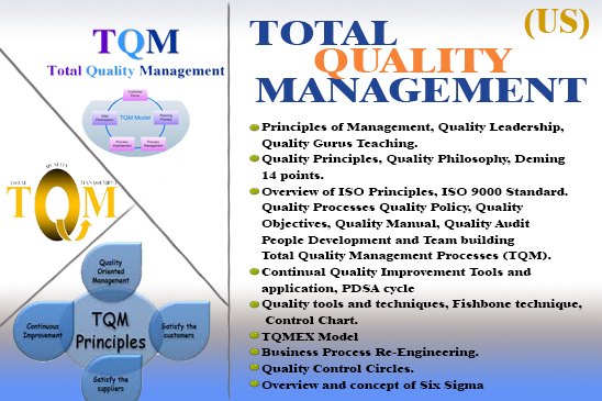 Dissertation on quality management